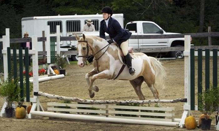 New Boston Farm - Gray: $30 for a 50-Minute Introductory Horseback Riding Lesson at New Boston Farm ($60 Value)