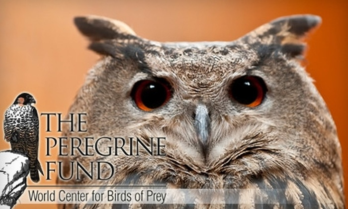 Peregrine Fund World Center for Birds of Prey - Orchard: $14 for a Single Family Pass to the Peregrine Fund World Center for Birds of Prey (Up to $34 Value)