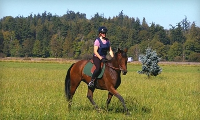 Equine Makeovers - Stanwood: $15 for a 30-Minute Private Horseback-Riding Lesson from Equine Makeovers in Stanwood ($30 Value)