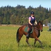 Half Off Horseback-Riding Lesson in Stanwood