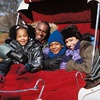 Up to 53% Off Holiday Carriage Outing in Covington