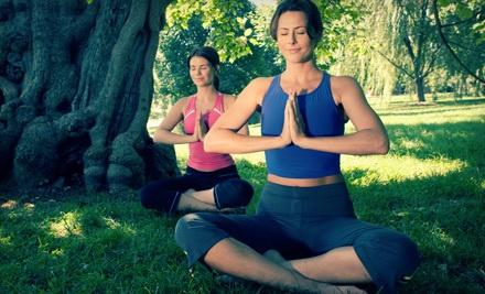 10 Drop-in Vinyasa Yoga Classes (a $150 value) - Healing Movements in Surrey
