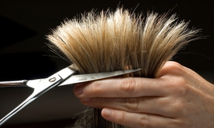 Studio 290 - Mill Valley: $75 for a Haircut and Color at Studio 290 in Mill Valley (Up to $180 Value)