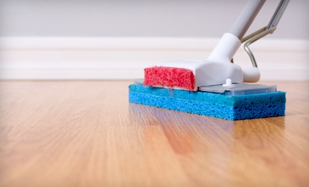 1 Eco-Friendly Housecleaning (a $170 value) - All in 1 Home Solutions in