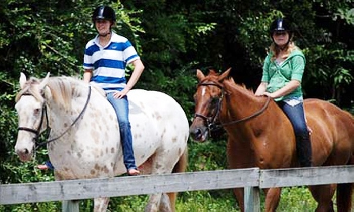 Tavia Equine Center - St. Rose: $45 for One Introductory Horseback-Riding Lesson and Two Full Private Lessons at Tavia Equine Center ($135 Value)