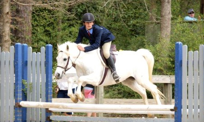 High Hopes Farm - Madison: Two Introductory or Two Advanced Horse-Riding Lessons at High Hopes Farm (Up to Half Off)