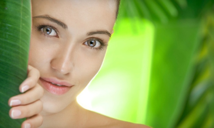 Results! Medical Spa - Carrollton: One, Three, or Six 60-Minute Signature Facials at Results! Medical Spa in Carrollton (Up to 62% Off)