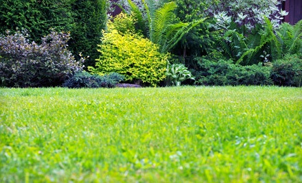 4 Weeks of Lawn Mowing (a $220 value) - Lawn and Landscape Gardens in