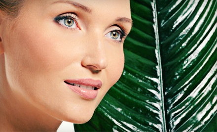 1-Hour Organic Facial (a $75 value) - Leigh at Fabi of Rome in Wethersfield