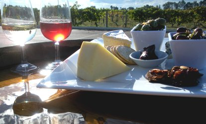 Food, Wine & Beer Speed Grazing Tour for 2 ($89), 4 ($179) or 6 People ($269) with Taste Bud Tours (Up to $570 Value)