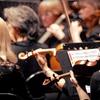 The American Philharmonic – Half Off Concert