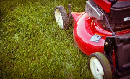 2 Lawn-Care Visits (a $110 value) - Smalls Landscaping in
