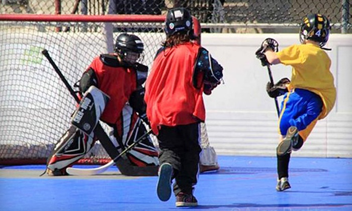 Power Play Centre - Gardiners: $32 for One Hour of Ball-Hockey Rink Rental at Power Play Centre ($65 Value)