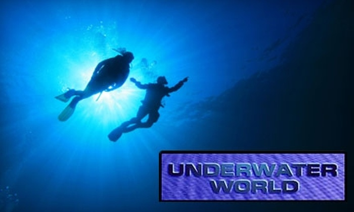 Underwater World - Multiple Locations: $25 for Discover Scuba Class from Underwater World ($50 Value)