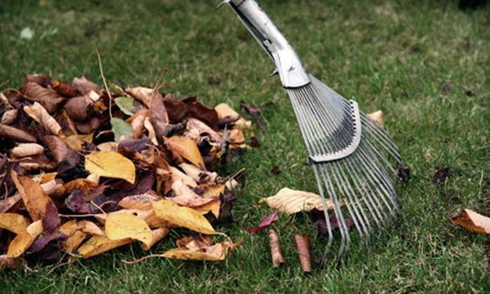 Salient Landscaping - Ann Arbor: Lawn Aeration or Leaf-Removal Services from Salient Landscaping (Up to 72% Off). Four Options Available.