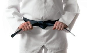 Master Kim's World Champion TaeKwonDo Chesapeake: $28 for 16 Taekwondo Classes and a Uniform at Master Kim's World Champion Tae Kwon Do Chesapeake ($290 Value)