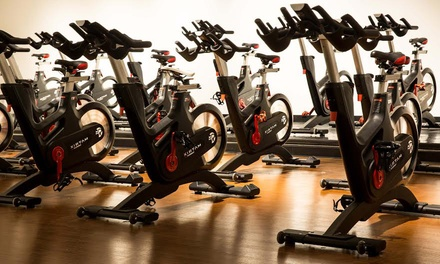 Five Indoor Cycling Classes or Three-Week Unlimited Pass at Purple Pedal (Up to 78% Off)