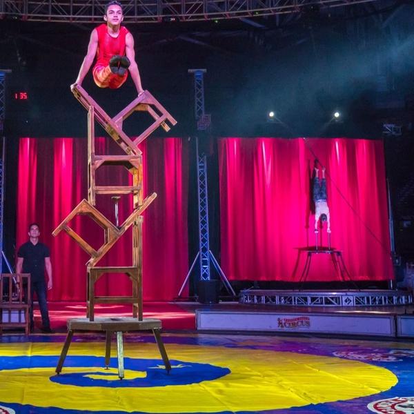 Garden Bros Circus Garden Bros Circus Groupon