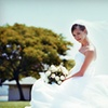 Up to 56% Off Bridal-Gown Preservation