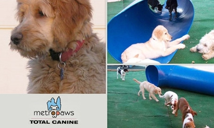 Metro Paws - Wilmore: $39 for Two Full Days of Doggie Day Care and a Dog Bath at Metro Paws (Up to $95 Value)