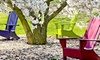 Up to Half Off Two-Night Cottage Stay in Milltown