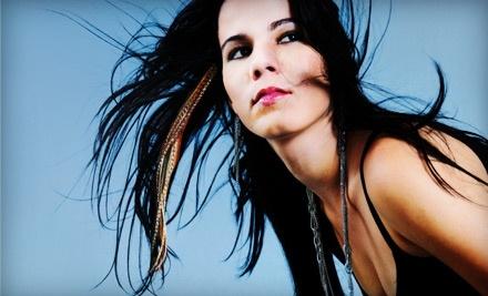 Rachel Weigman's Hair Studio: $20 Groupon for Feather Hair Extensions - Rachel Weigman's Hair Studio in Lincoln