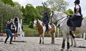 Trent Park Equestrian Centre: Horse Riding Experience with Hot Chocolate and Cake at Trent Park Equestrian Centre (Up to 61% Off)