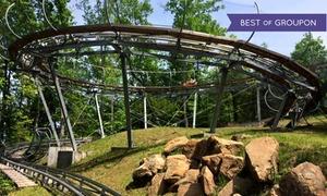 Smoky Mountain Alpine Coaster: $20 for an Alpine Coaster Ride for up to Two at Smoky Mountain Alpine Coaster ($30 Value)