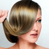 Up to 62% Off a Brazilian Blowout and Optional Cut