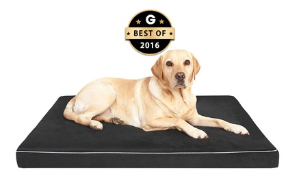 $39 for a Large Memory Foam Pet Bed