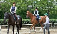 癒し・出逢い・感動。初心者のためのお試しコース≪乗馬体験30分/平日限定 or 土日祝限定≫土日OK @TRC乗馬クラブ高崎