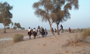 Hobbies Club: 90-Minute Desert Hacking with Optional Riding Lesson for One or Two from Hobbies Club