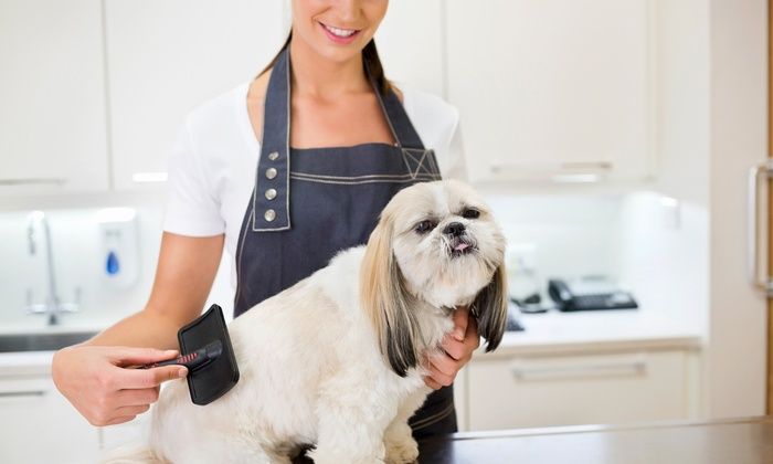 Ruff-N-Fluff Pet Grooming - Ruff-N-Fluff Pet Grooming: Full Dog-Grooming Service at Ruff-N-Fluff Pet Grooming (Up to 51% Off)