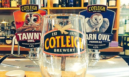 One-Hour Brewery Tour and Beer Tasting for One, Two or Four at Cotleigh Brewery (Up to 50% Off)