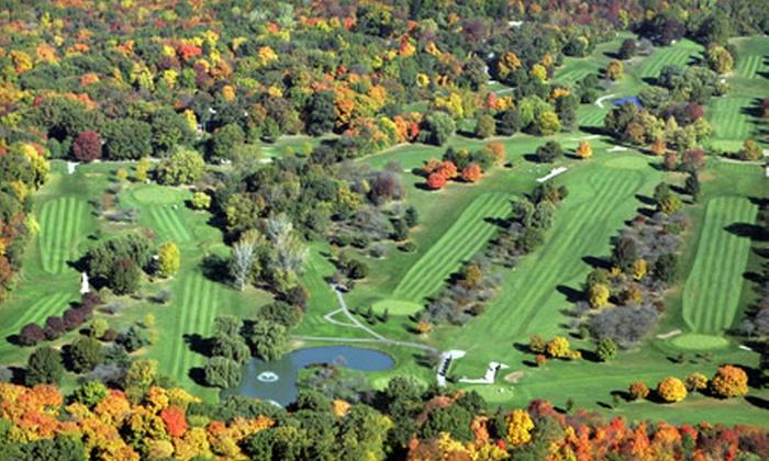 Joliet Park District - Multiple Locations: Golf for Up to Four at the Joliet Park District in (Up to $212 Value)
