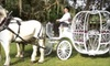 Ocala Carriage & Tours - Fellowship: $45 for a One-Hour Carriage or Sleigh Ride for Up to Four People from Ocala Carriage & Tours (Up to $95 Value)