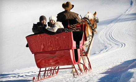 45-Minute Sleigh Ride for 1 (a $25 value) - Garden Valley Trail Rides in Garden Valley