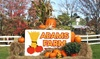 Adam's Farm - East Woonsocket: $19 for a Fall Farm Outing for Up to Six at Adam's Farm (Up to $31.50 Value). Three Weekends Available.