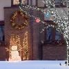 String of 100 LED Solar-Powered Fairy Lights