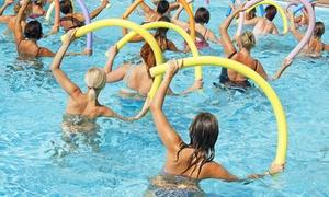 Arca Wellness: 10 lezioni di Aquafitness da 50 minuti per una o 2 persone al centro sportivo Arca Wellness (sconto fino a 83%)