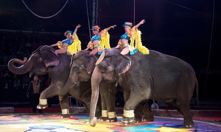 Carden Super Spectacular Circus on October 12 or 13