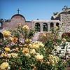 Mission San Juan Capistrano – Half Off Visit