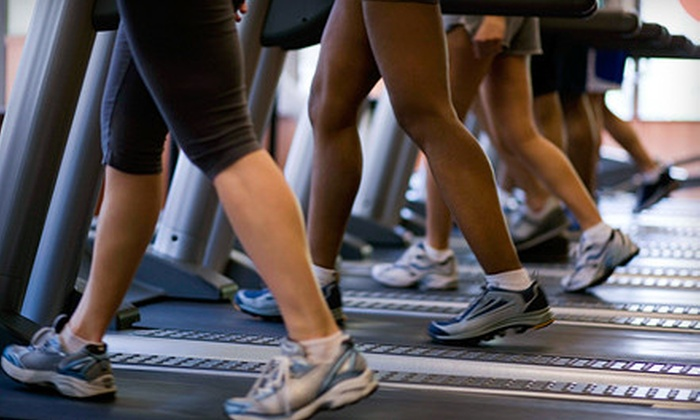 Clarkston Gym & Fitness - Clarkston: Two- or Three-Month Gym Membership at Clarkston Gym & Fitness (Up to 67% Off)