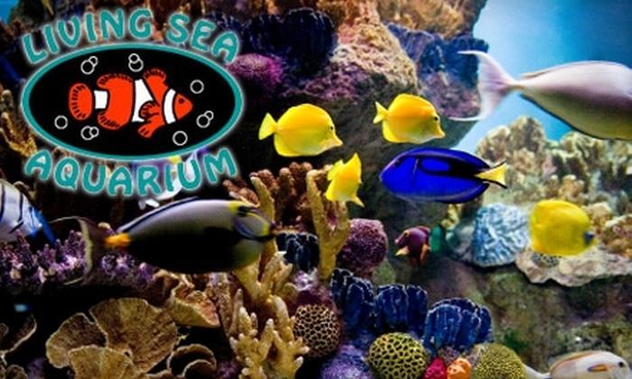 Living Sea Aquarium - Park Ridge: $5 for Two Passes for Aquarium Experience Tours ($10 Value) or $10 for $20 Worth of Fish and Supplies at Living Sea Aquarium in Park Ridge