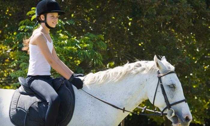 Deerfield Farm - Stouffville: $23 for a One-Hour Introductory Horse-Riding Lesson at Deerfield Farm in Stouffville ($56.50 Value)