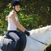 59% Off Horse-Riding Lesson in Stouffville