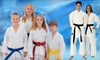 Up to 81% Off at Morrison Family Karate
