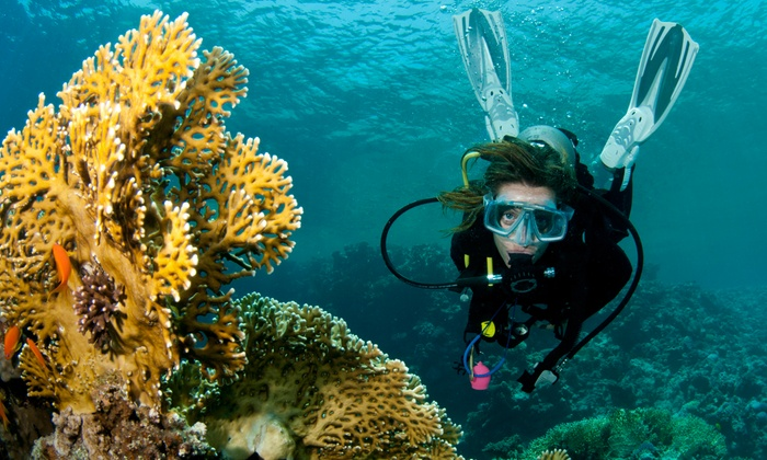 Scuba Quest - Multiple Locations: Scuba Certification or Refresher Course at Scuba Quest (Up to 70% Off)