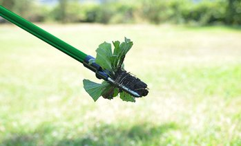Stand-Up Weed Root Remover