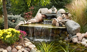 Tampa Bay Ponds & Rocks: $20 for $40 Worth of Pond and Stones Merchandise at Tampa Bay Ponds & Rocks